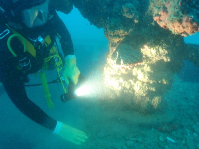 Occupational Diver Training Vanuatu
