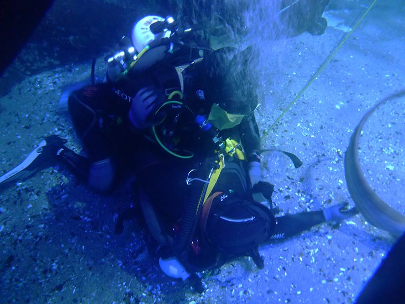 Occupational diver rescue drill training in Aquarium