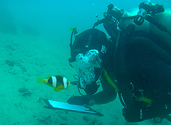 ADAS Part 1 Diving Student Marine Survey