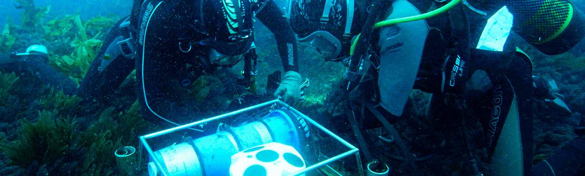Scientific Diver training course