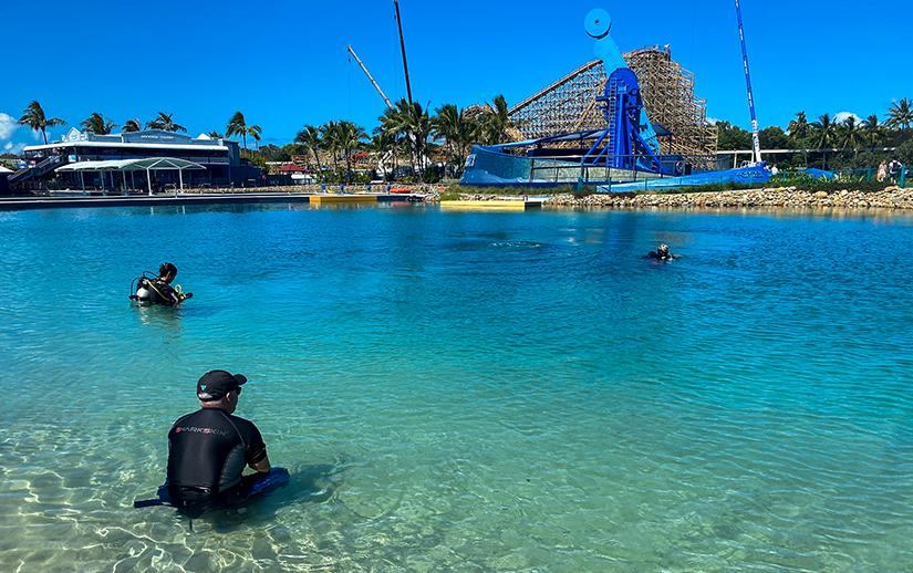 Sea World Diver Training